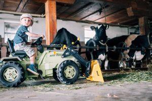 Bauernhofferien Oberdürnberg für Kinder im Salzburger Seenland